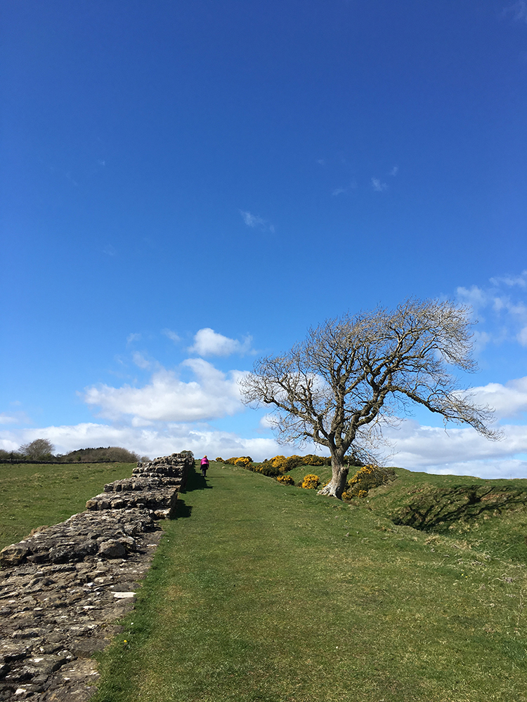 Walking Hadrian's Wall - Black Carts