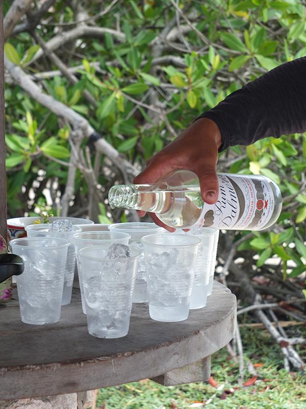 Frankies Abaco Avocado Cocktail