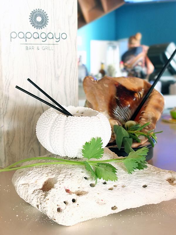 Papagayo Bar Renaissance Island Aruba