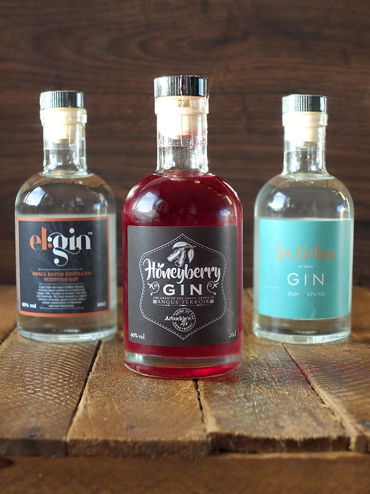 Flavourly Craft Gin Discover Club Review