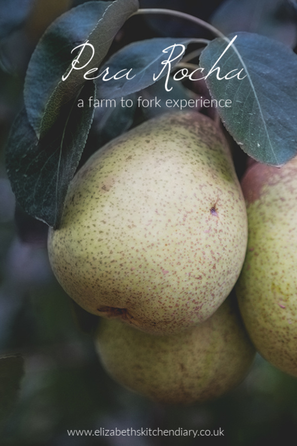 Pera Rocha: A Farm to Fork Experience - Portugal #RochaPear #Portugal #fruit