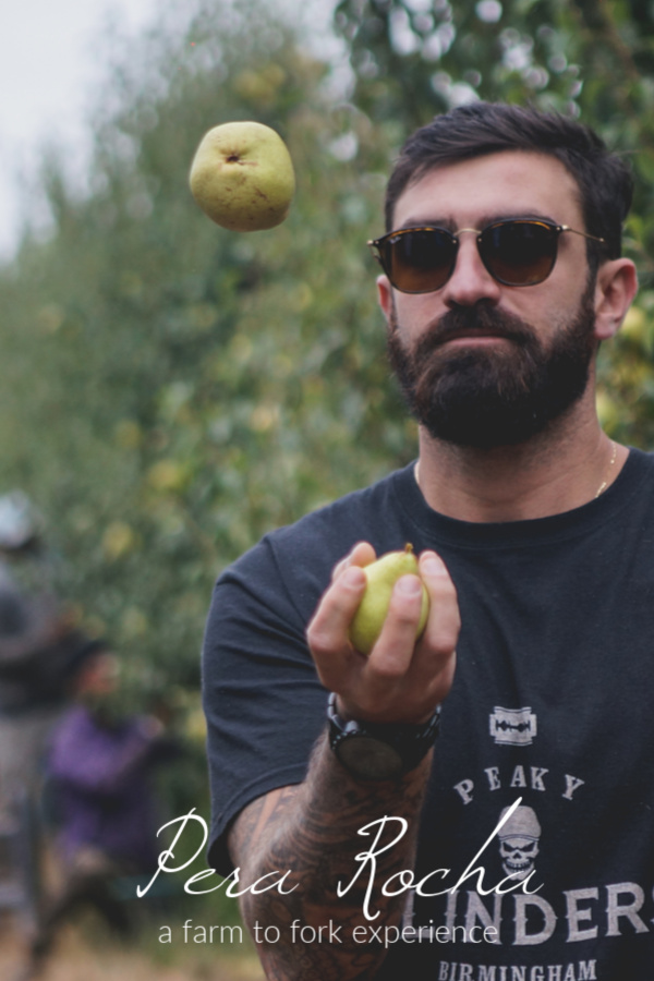 Pera Rocha: A Farm to Fork Experience - Portugal #RochaPear #Portugal #fruit