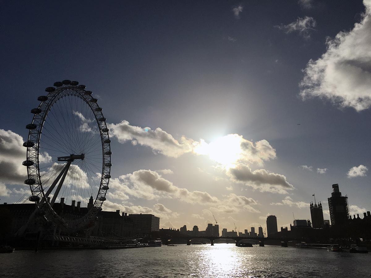 London Eye Thames River Sightseeing Cruise
